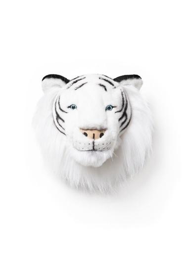 Kaplan Albert -Wild&Soft